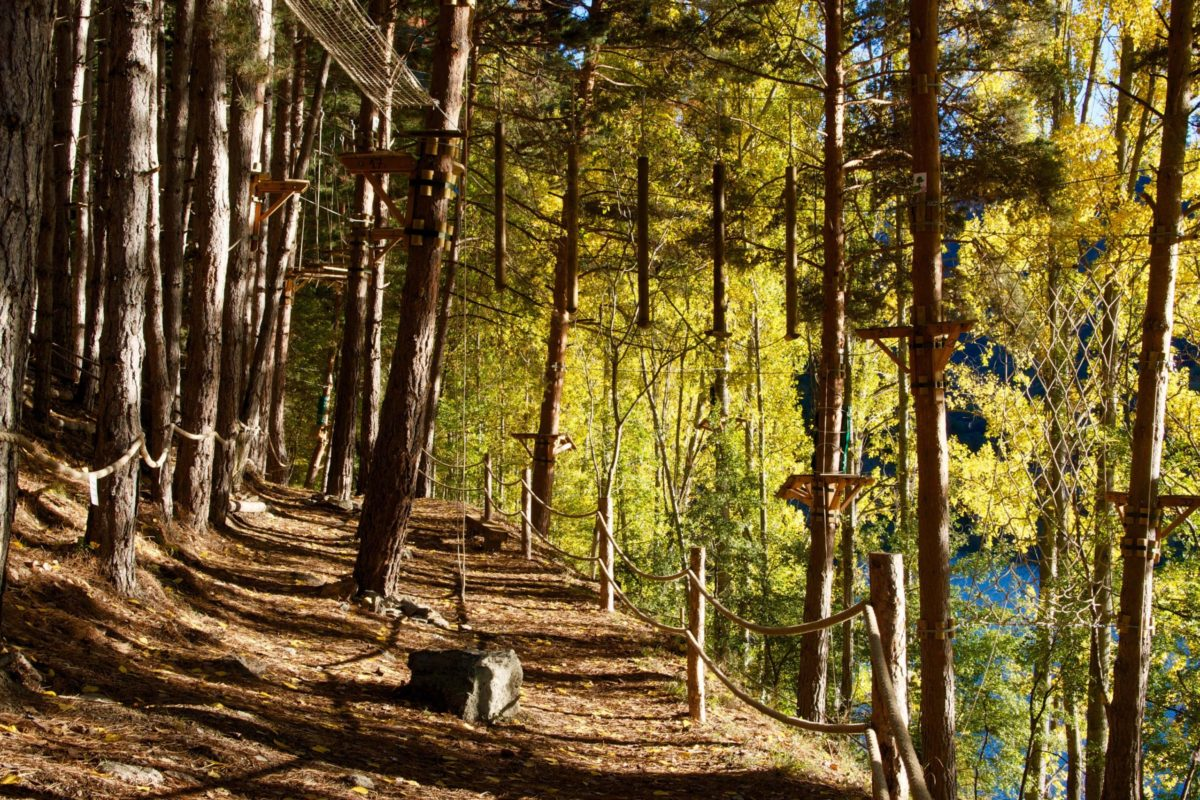 cami-natura-pirineus-parc